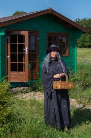 Heksen ved huset